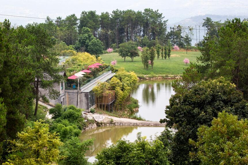园林和景观